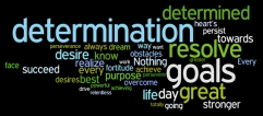 determinatino wordle
